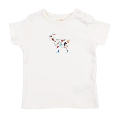 pigeon - T shirt geit