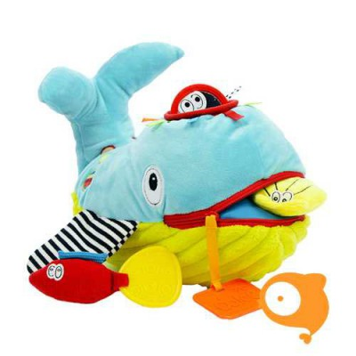 Dolce Toys - Play and learn Whale