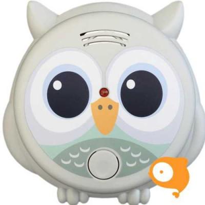 Flow - Rookmelder Mister Owl