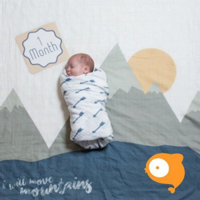 Lulujo - Swaddle & cards I will move mountains