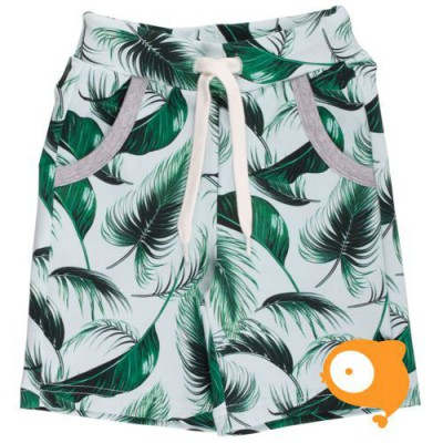 Freds World - Boy Shorts Palm