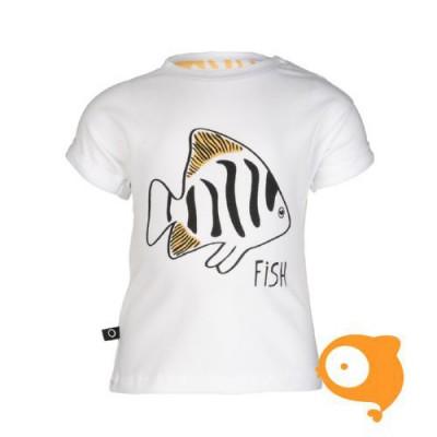 nOeser - Tom hipster fish white
