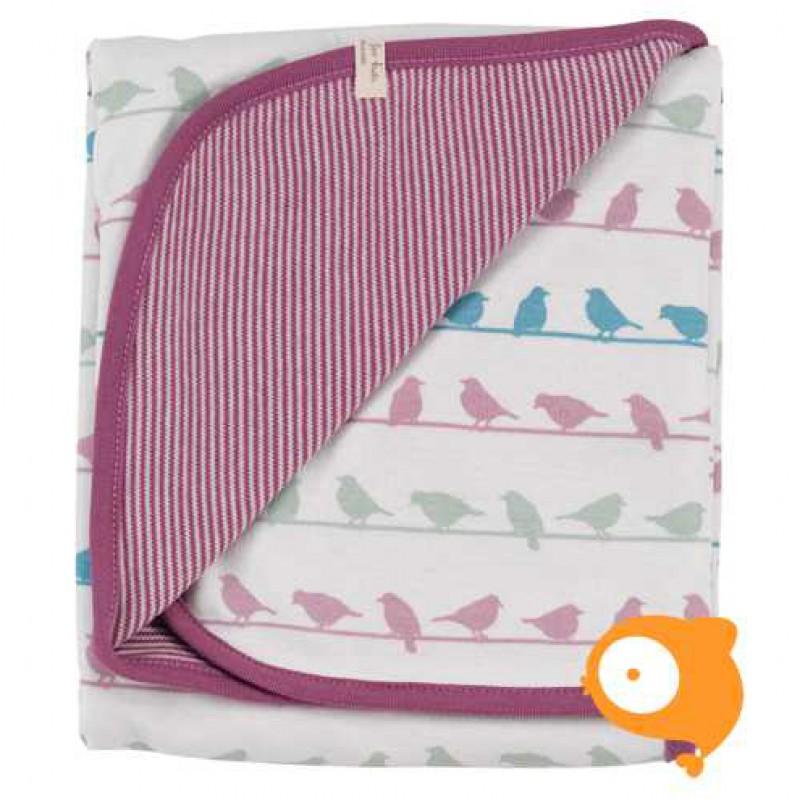 Pigeon - Blanket vogeltjes