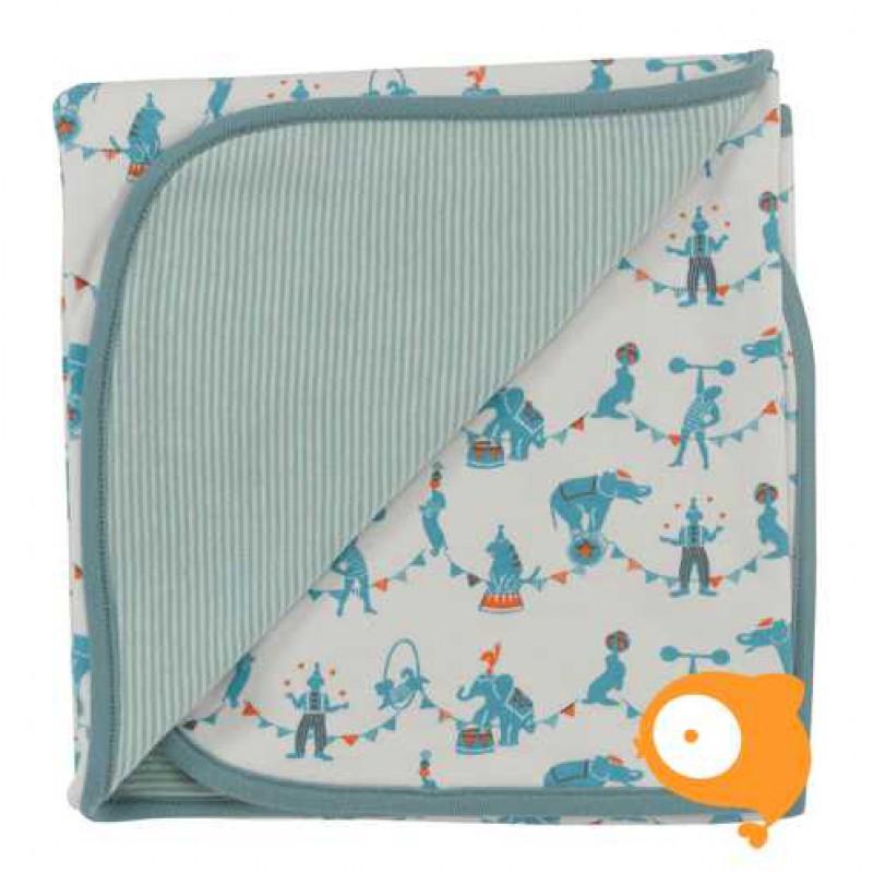 Pigeon - Blanket circus